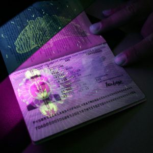 possible to apply for fake visa and passport online