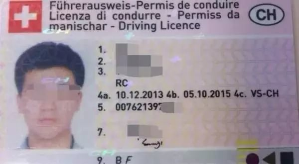 Fake Swiss Driving License Application Deal