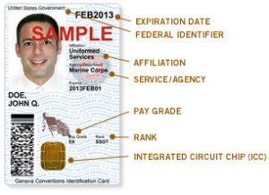 buy a fake id card online