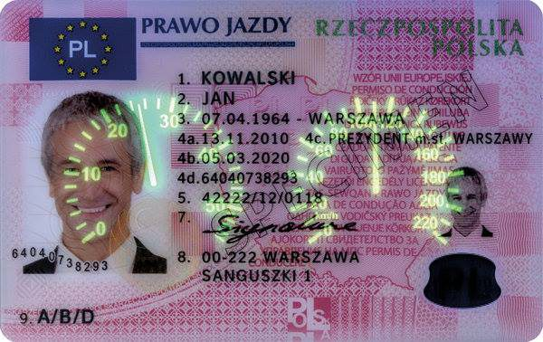 Get Polish Drivers License